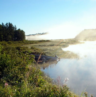 misty morning on Grassy river