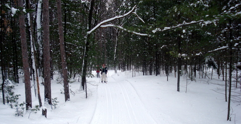 cross country ski, ontario