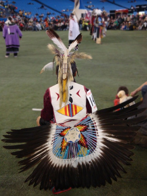 watching the pow wow dancers