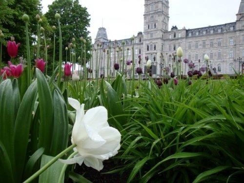 Quebec National Parliament